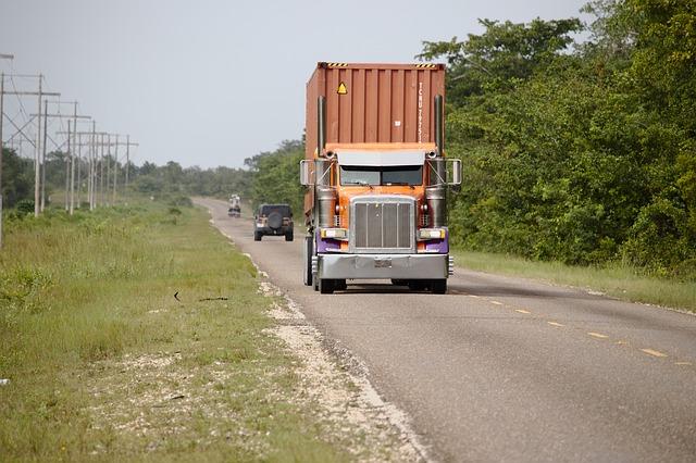 nákladní auto u lesa.jpg