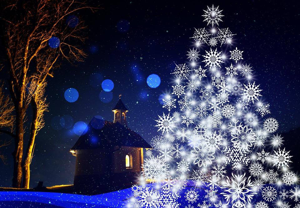 vánoční_strom